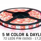 RGBW LED strip color + cold white - 5 M - 72 LED's P/M - 12V