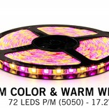 RGBW LED strip 180 LED's 17.2W p/m 12V 2,5 meter