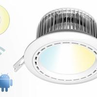 LED Spots Dual White