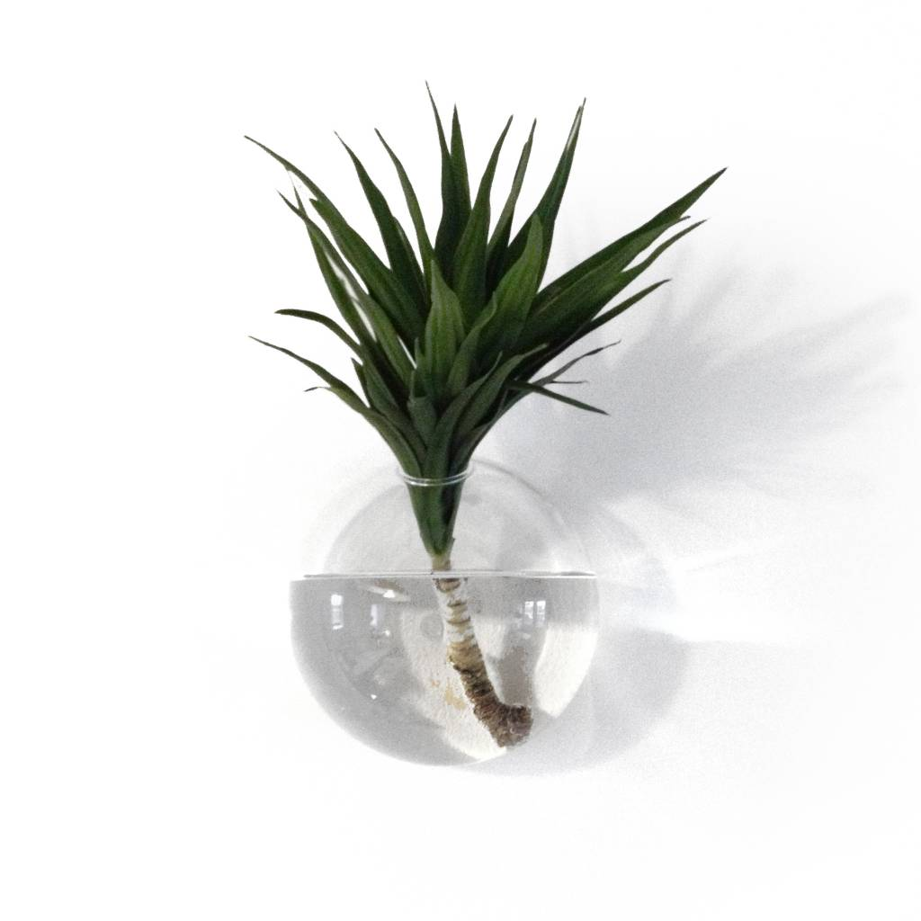 Glass wall vase store without a home wall vase drop small reviewsmspy