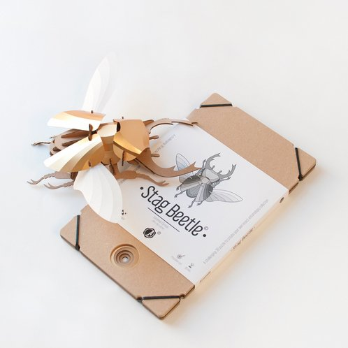 Paper Beetle / Stag / Gold
