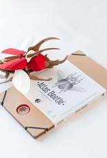 Paper Beetle / Atlas / Red