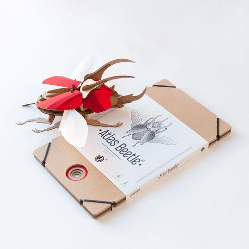 Papieren kever / Atlas / Rood