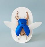 Paper Beetle / Atlas / Rood