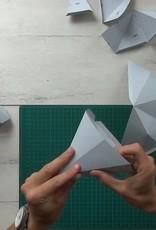 Paper Fox / Grey