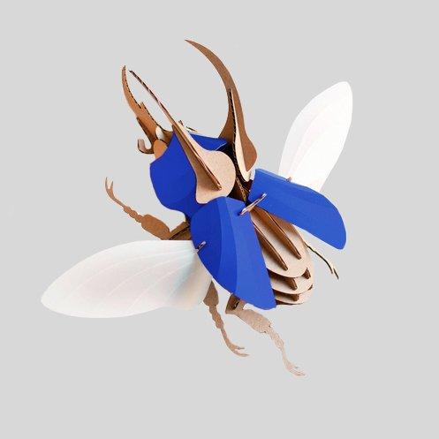 Paper Beetle / Atlas / Blue