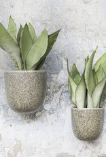 Wall Pot / L / Green