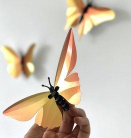 Papieren Vlinders / Oranje