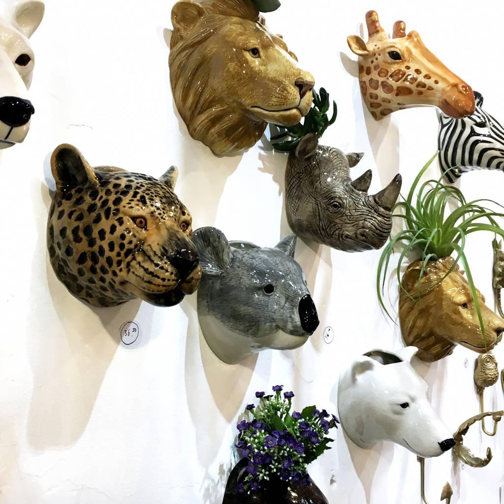 Wandvaas / Luipaard