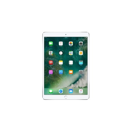 Apple Apple iPad Pro 256GB 3G 4G Zilver tablet