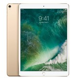 Apple Apple iPad Pro 64GB 3G 4G Goud tablet