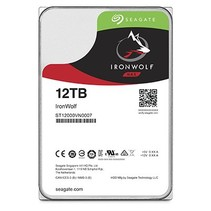 12TB Guardian IronWolf NAS (ST12000VN0007)