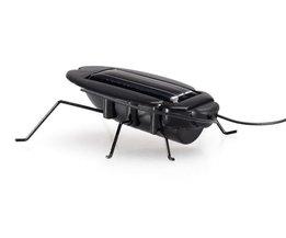 Kakkerlak op Zonne-Energie