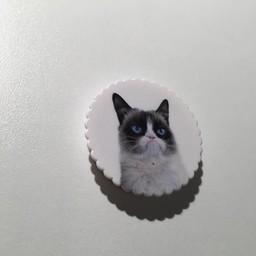 Pop socket Kat