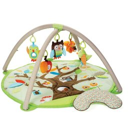 Skip Hop playmat Friends Activity Gym