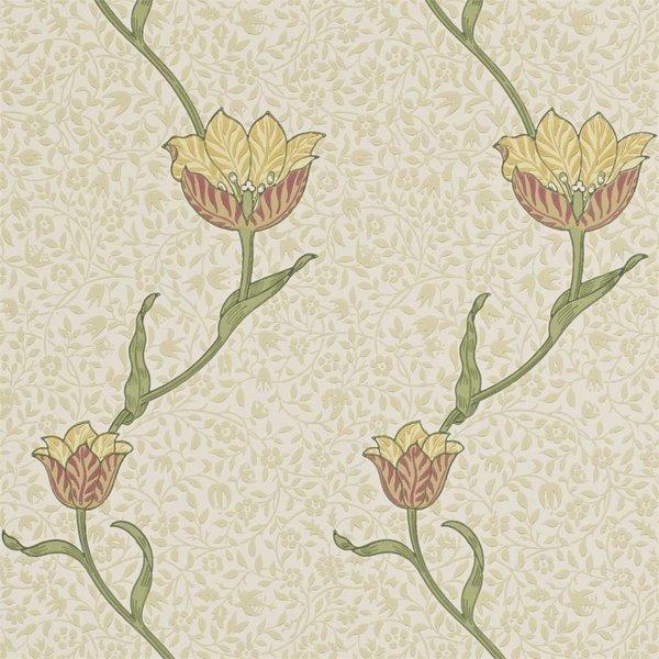 Garden Tulip - Russet/Lichen