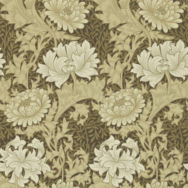 Chrysanthemum - Bullrush DARW-212547