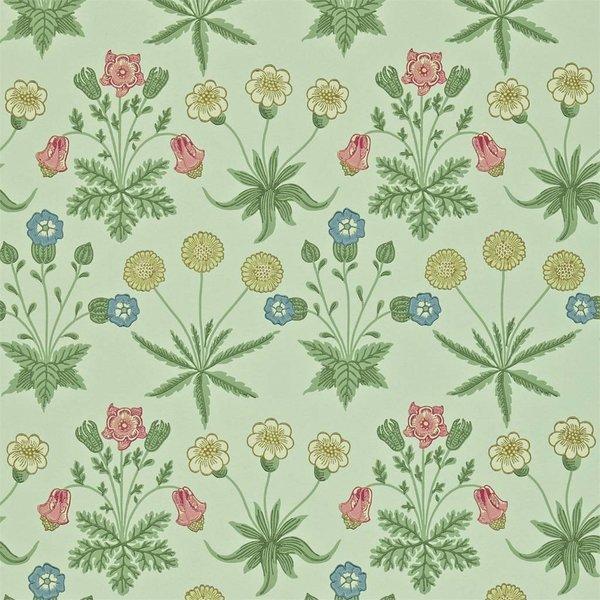 Daisy - Pale Green/Rose DARW-212559