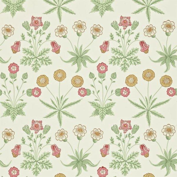 Daisy - Willow/Pink DARW-212562