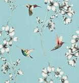 Harlequin Amazilia Sky (Licht Blauw) 111060 Wallpaper