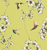 Harlequin Amazilia Gooseberry (Mosterd Geel) 111061 Wallpaper