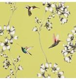 Harlequin Amazilia Gooseberry (Mosterd Geel) 111061 Behang