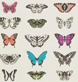 Harlequin Papilio Roze, Paars, Grijs, Groen, Zwart 111079 Wallpaper