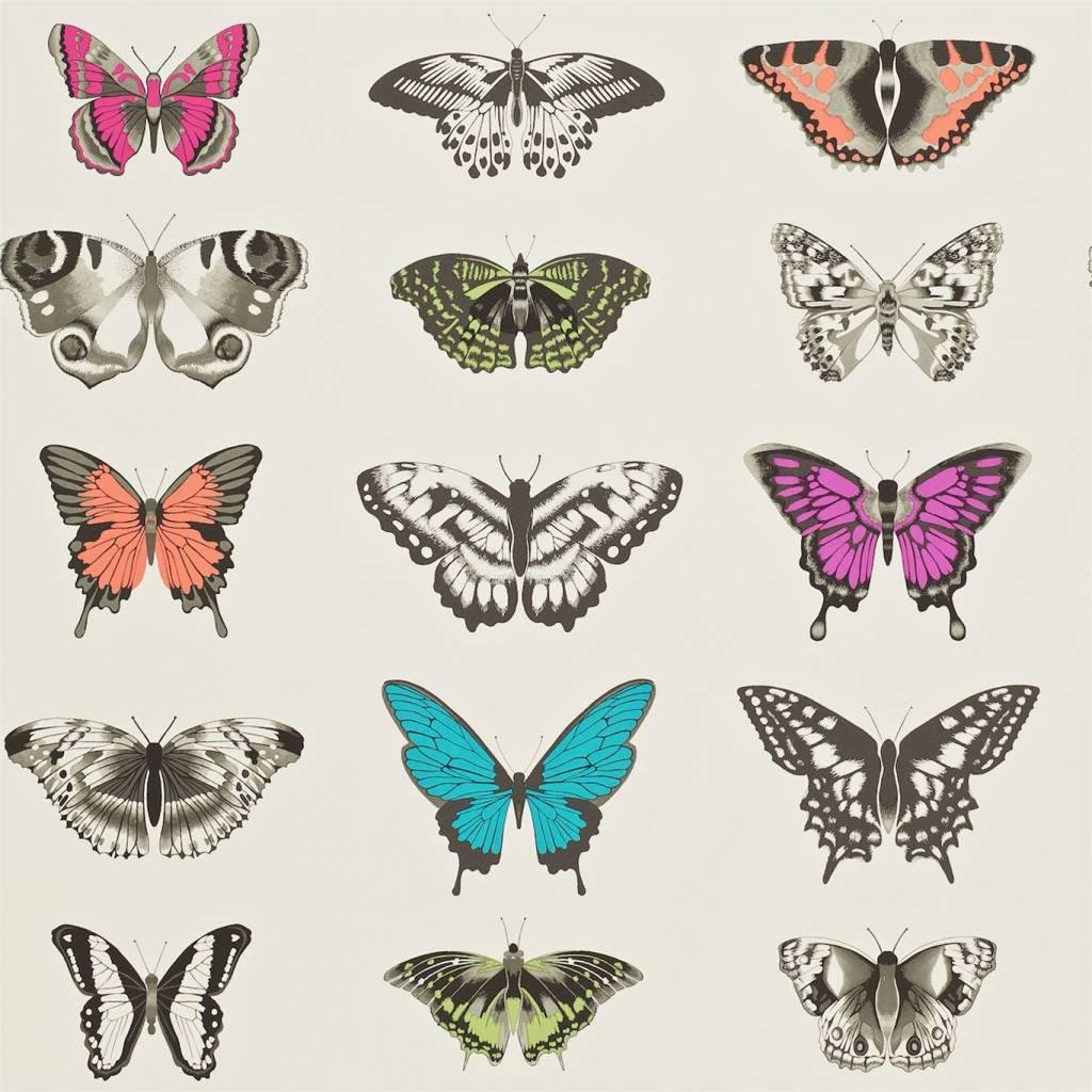Papilio Roze, Paars, Grijs, Groen, Zwart 111079 - De Mooiste Muren