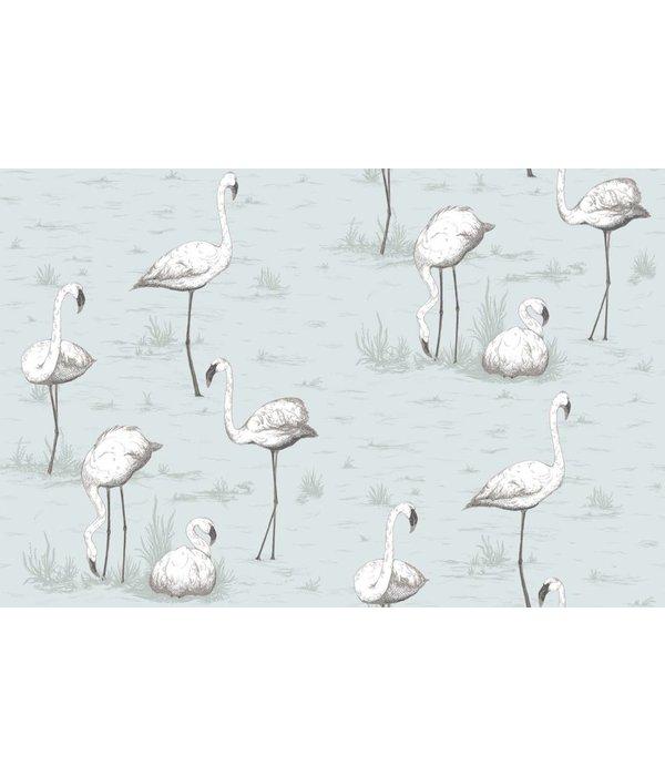 Cole-Son Flamingos Licht Blauw 95/8047 Behang