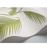 Cole-Son Palm Wit Groen 95/1009 Behang