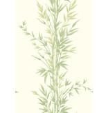 Cole-Son Bamboo Groen (Green) 100/5023 Behang