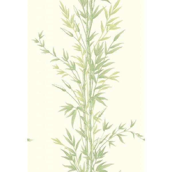Bamboo Groen (Green) 100/5023