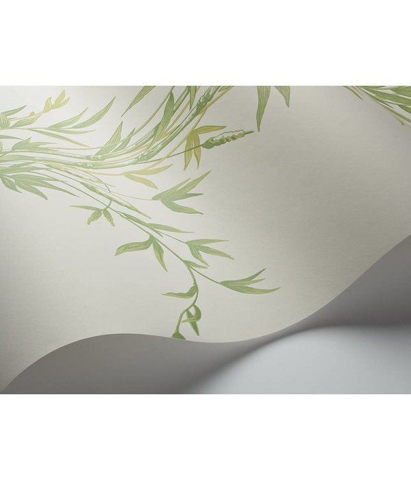 Cole-Son Bamboo Groen (Green) 100/5023 Wallpaper