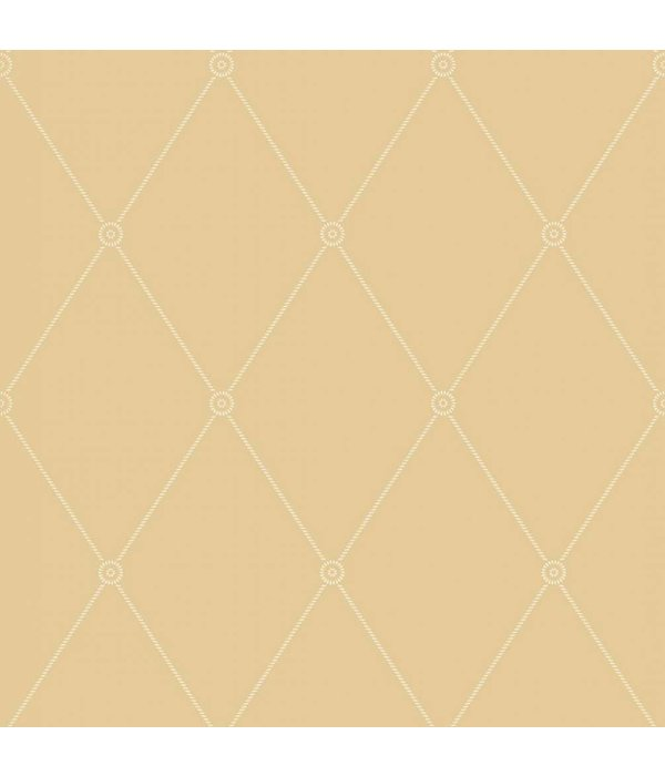 Cole-Son Large Georgian Rope Trellis Oranje / Geel 100/13064 Wallpaper
