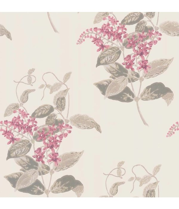 Cole-Son Madras Violet Pink (Groen, Roze) 100/12058 Wallpaper