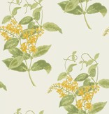Cole-Son Madras Violet Yellow (Geel, Groen, Wit) 100/12059 Wallpaper