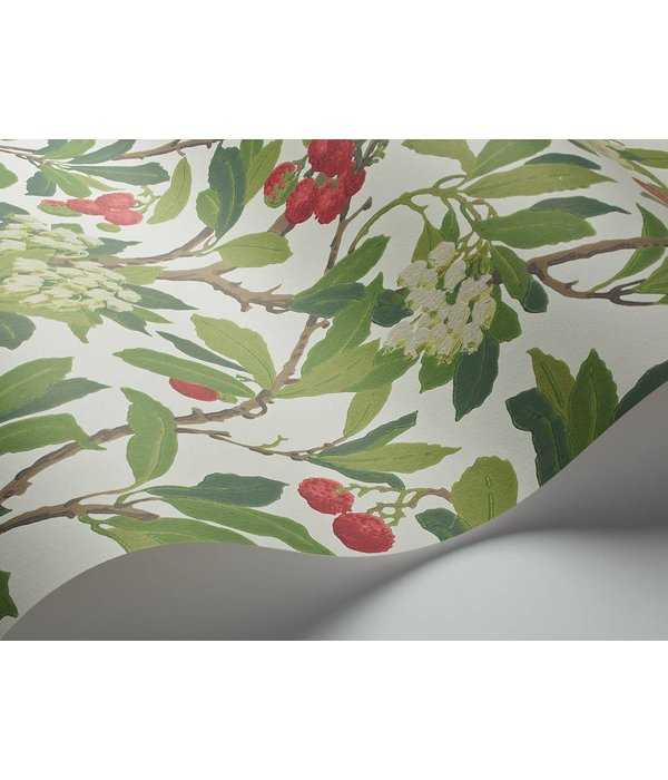 Cole-Son Strawberry Tree Scarlet, Ivory (Rood, Wit, Groen) 100/10049 Wallpaper