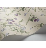 Cole-Son Sweet Pea Paars, Groen 100/6030 Wallpaper