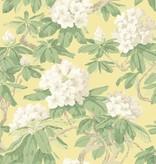 Cole-Son Bourlie Ivory Wit, Pale Lemon 99/4021 Behang