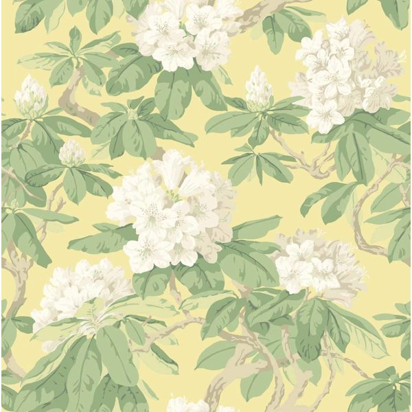 Bourlie Ivory Wit, Pale Lemon 99/4021