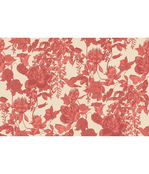 Cole-Son Tivoli Coral, Rood 99/7033 Behang