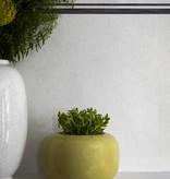 Cole-Son Trianon Ivory 99/11047 Wallpaper