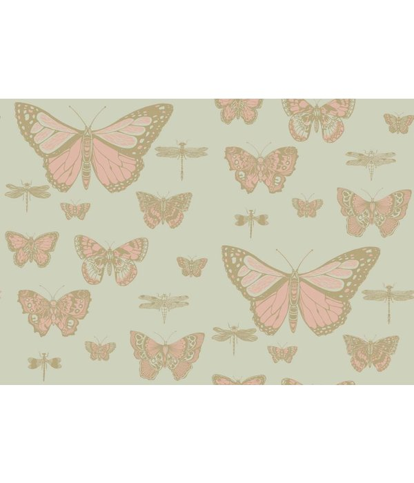 Cole-Son Butterflies & Dragonflies Pink & Olive 103/15063 Wallpaper