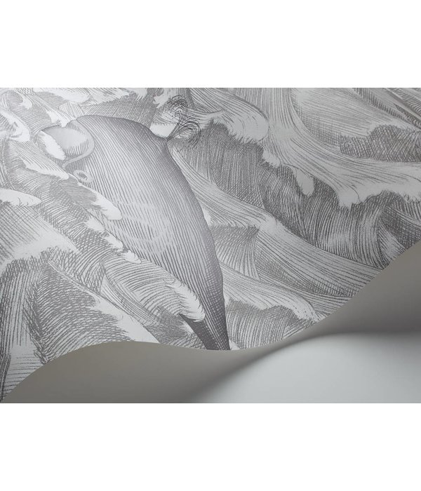 Cole-Son Melville Black, White (Zwart, Wit) 103/1004 Wallpaper