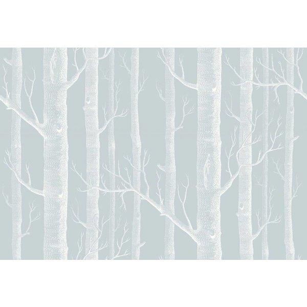 Woods Powder Blue (Zacht Blauw, Wit) 103/5022