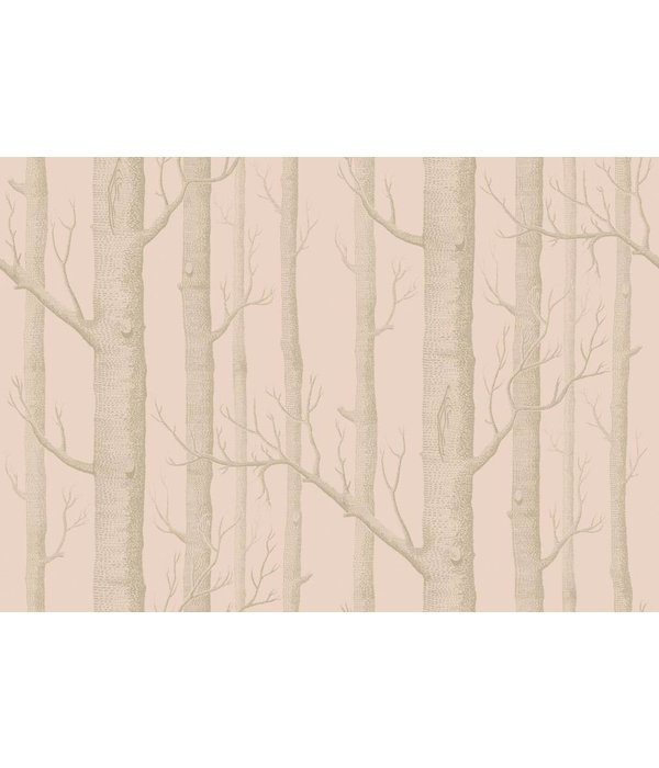 Cole-Son Woods Pink / Gilver (Roze, Gilver) 103/5024 Wallpaper