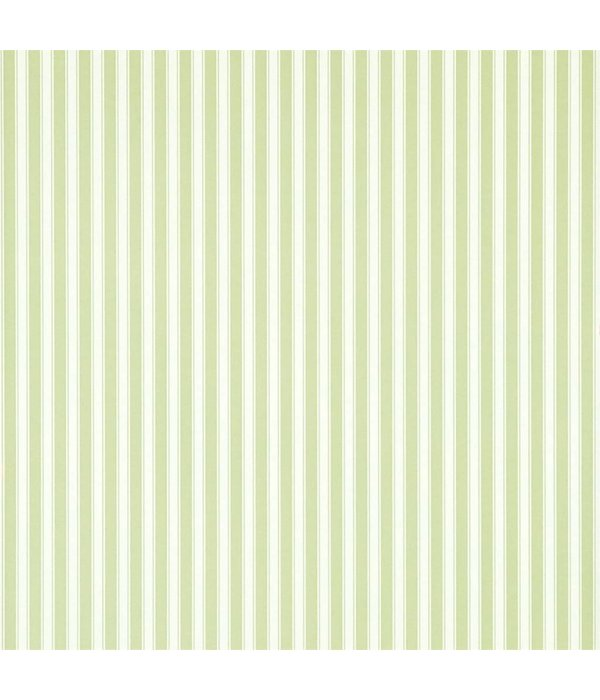 Sanderson New Tiger Stripe Leaf Green/Ivory DCAVTP103