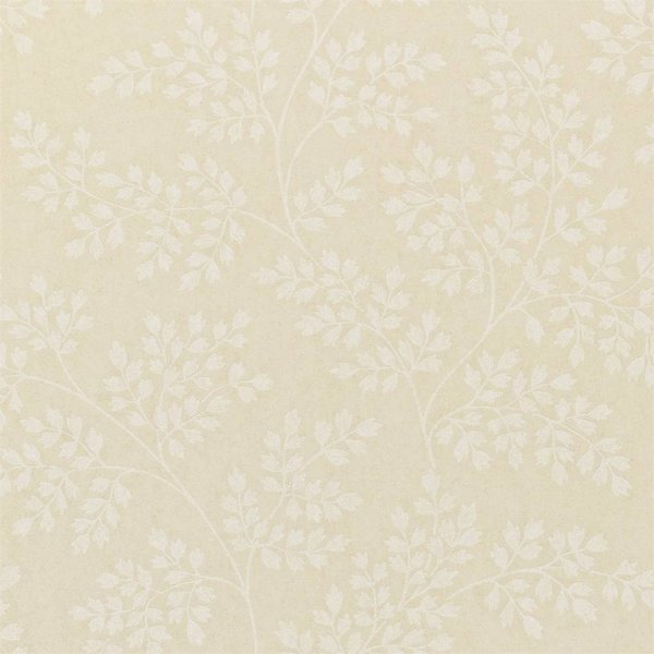 Coralie Shell/Ivory DCAVCO104