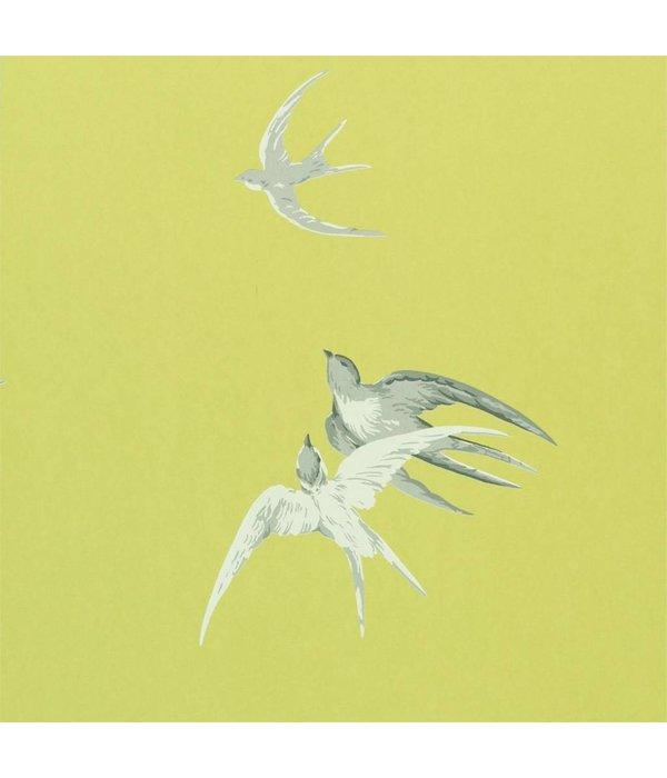 Sanderson Swallows Lime DVIWSW101 Behang
