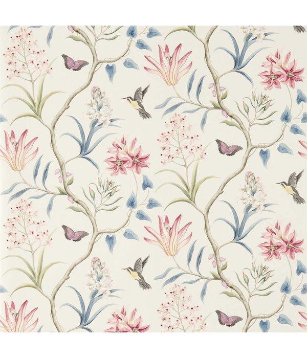 Sanderson Clementine Indienne Wallpaper